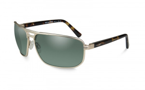 Okulary HAYDEN ACHAY04 Polarized Smoke Green Lens Satin Gold Frame